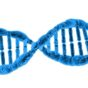 dna-163710_1280-Image by PublicDomainPictures from Pixabay-1